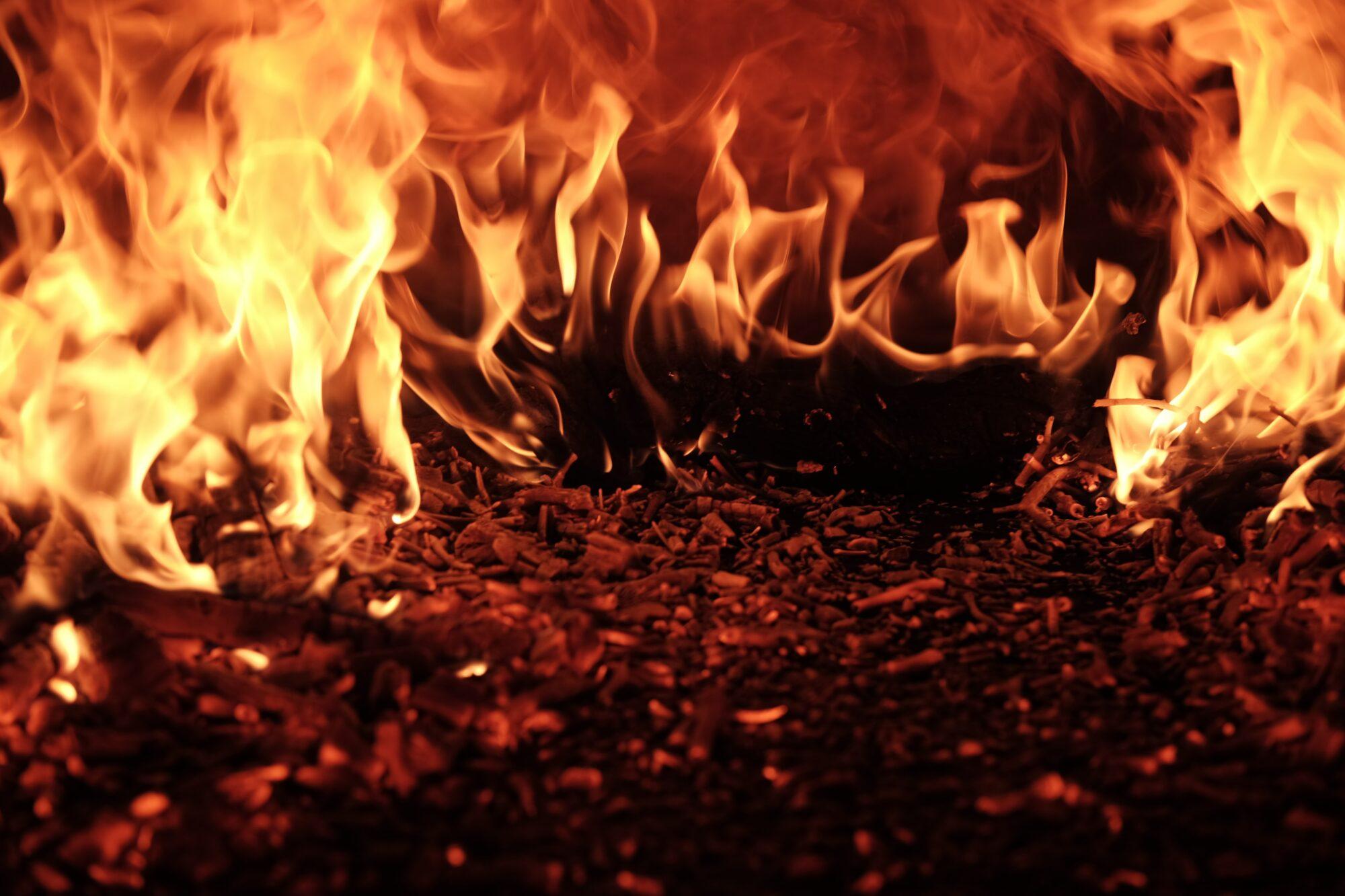 Blue Point træpiller – den helt rigtige måde at brænde på