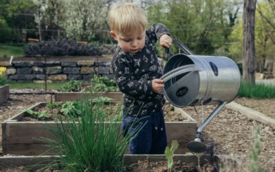 3 tips til en mere børnevenlig have