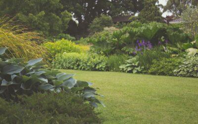 Køb udstyr for at forbedre din have