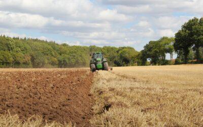 Hektarstøtte – hvad og hvordan?